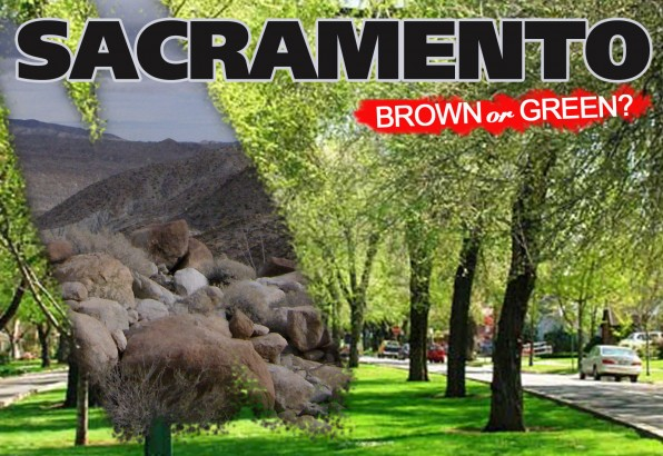 Artificial Grass | Sacramento: Back to Desert, or Lifting a Ban on Artificial Grass?