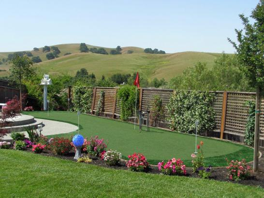Artificial Grass Photos: Synthetic Grass Cost Cannonville, Utah Indoor Putting Greens, Backyard Designs