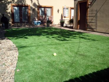 Artificial Grass Photos: Synthetic Grass Cost Cornish, Utah Landscape Design, Backyard Designs