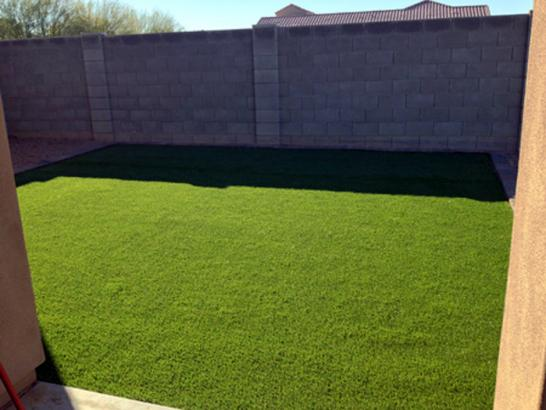 Artificial Grass Photos: Synthetic Grass Cost Sandy City, Utah Landscape Ideas, Backyard Design