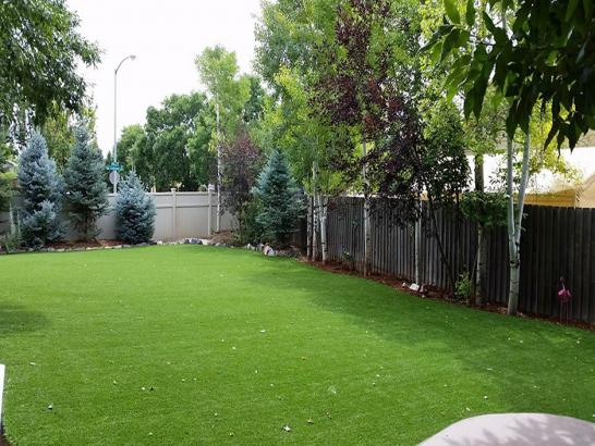 Artificial Grass Photos: Synthetic Grass Cost South Salt Lake, Utah Pictures Of Dogs, Backyard Design