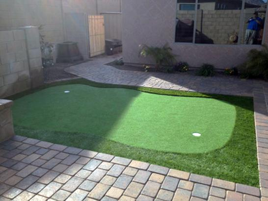 Artificial Grass Photos: Synthetic Grass Echo, Utah Putting Green, Backyard Landscape Ideas