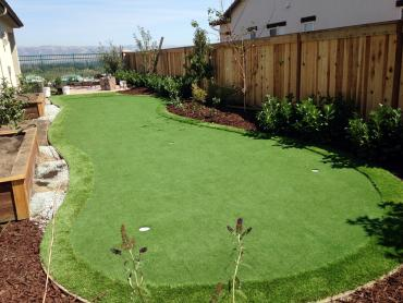 Artificial Grass Photos: Synthetic Grass Midvale, Utah Outdoor Putting Green, Backyard Design