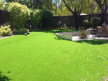 Artificial Grass Photos: Synthetic Grass Midway, Utah Home And Garden, Backyard