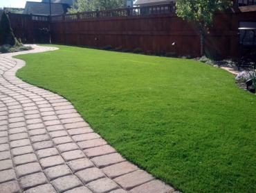 Artificial Grass Photos: Synthetic Lawn Providence, Utah Dog Park, Beautiful Backyards