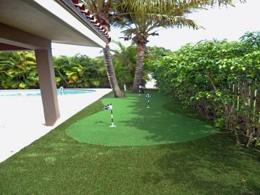Artificial Grass Photos: Synthetic Lawn Sunnyside, Utah Landscape Rock, Swimming Pool Designs