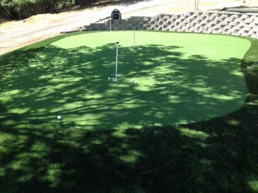 Synthetic Turf North Salt Lake, Utah Best Indoor Putting Green, Backyard Garden Ideas artificial grass