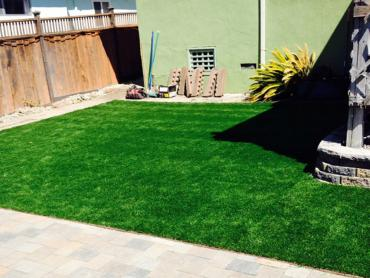 Artificial Grass Photos: Turf Grass Layton, Utah Artificial Turf For Dogs, Beautiful Backyards