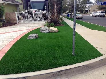 Artificial Grass Photos: Turf Grass Sterling, Utah Landscape Photos, Small Front Yard Landscaping